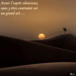 désert inspir