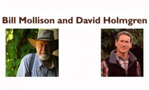 Mollison-B.-and-Holmgren-D